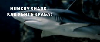 Hungry Shark - как убить краба